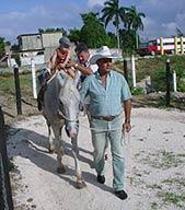 Notables beneficios de rehabilitación ecuestre en Cuba